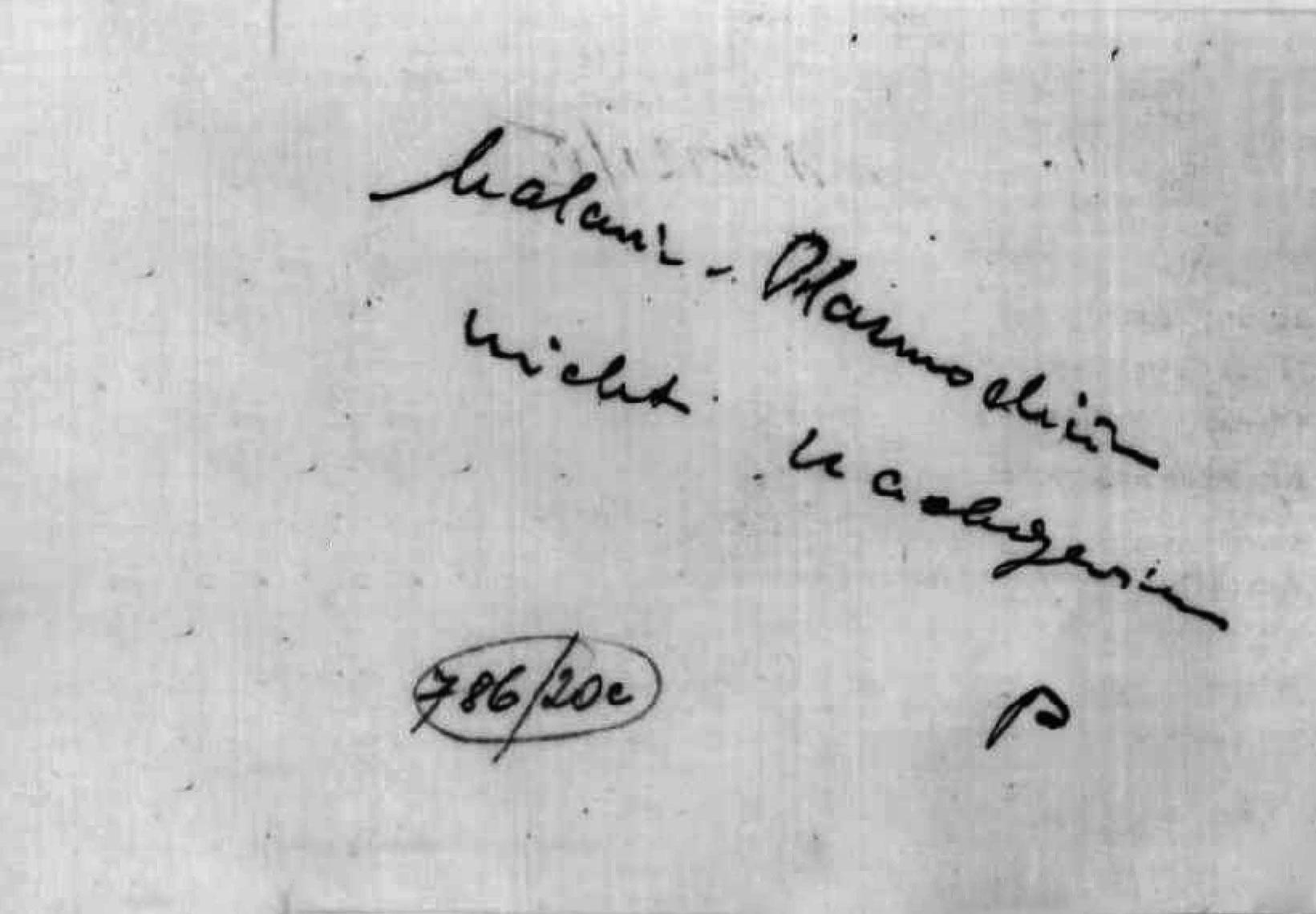 """Das SS-Hygiene-Institut in Auschwitz untersuchte das Blut von Berni Wallheimer und stellte """"keine Malaria"""" fest"""