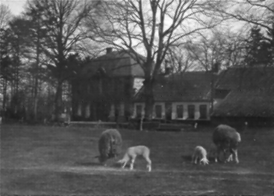 Gut Eschen: Bis zum September 1938 lebte Familie Wolff dort. Noch im Juli 1938 verpflegte die Familie dort 27 jüdische Kinder mit ihrer Lehrerin aus Berlin-Grunewald.