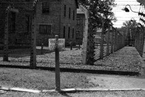 Auschwitz, 2012
